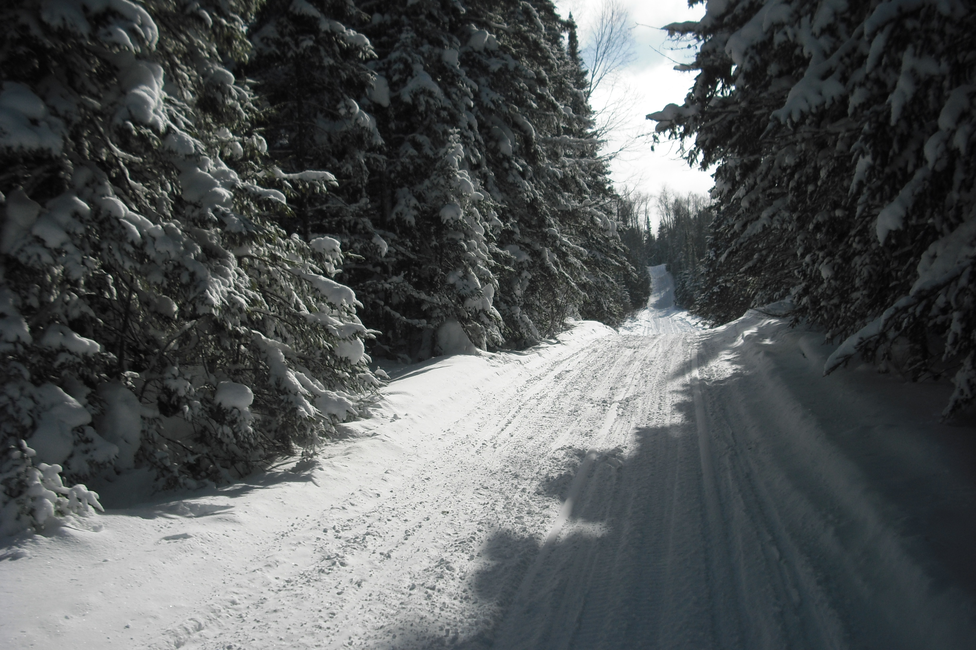 Picturesque  scenes like this were made possible by the work done by visionaries of snowmobiling's early days